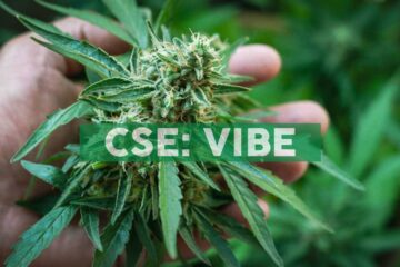 Vibe Reports Record Positive Adjusted EBITDA and Revenue; Provides First Quarter 2020 Financial Results and Second Quarter Outlook