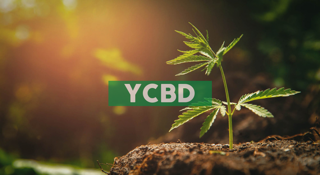 CbdMD, Inc. to Host Conference Call to Discuss Second Quarter 2020 Results