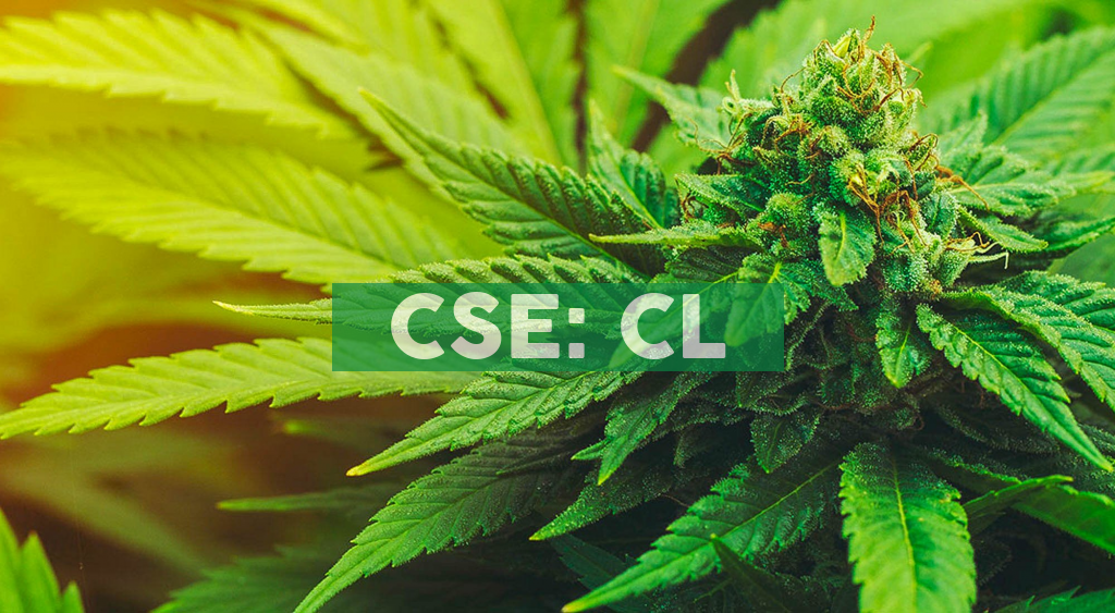 Cresco Labs Announces Opening of Sixth Sunnyside in Illinois and First Cannabis Dispensary in Danville