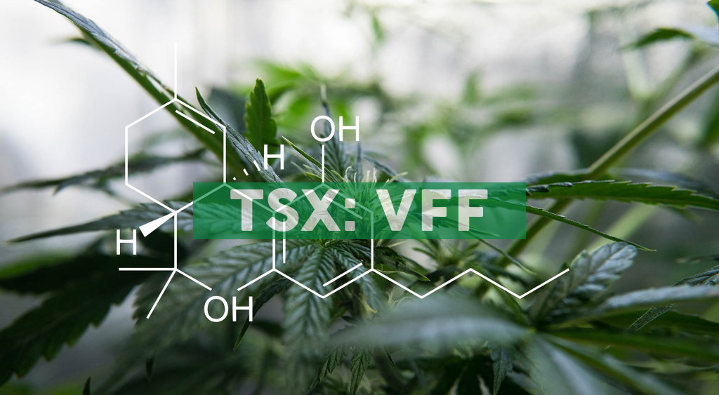 Village Farms International Announces Pure Sunfarms' Initial Cultivation and Sales License for Delta 2 Greenhouse / Pure Sunfarms to Begin Roll Out of Vape Products this Summer