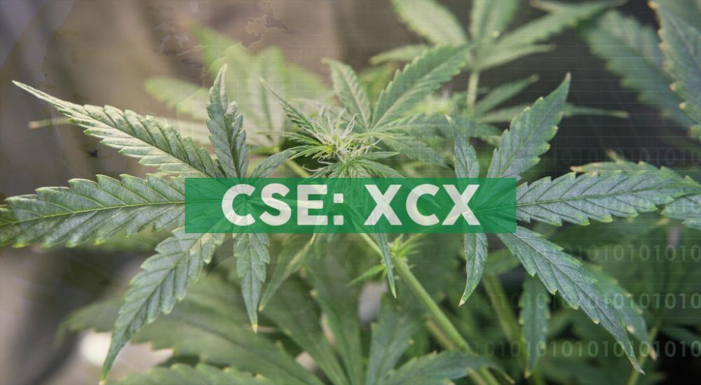 Deutsche Cannabis