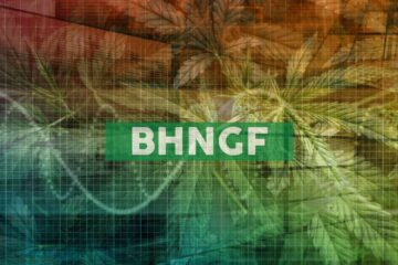Bhang Reports Delay in Filing 2019 Annual Financial Statements