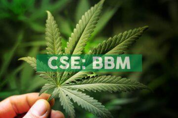 Blueberries Announces Strategic Partnership with medcann