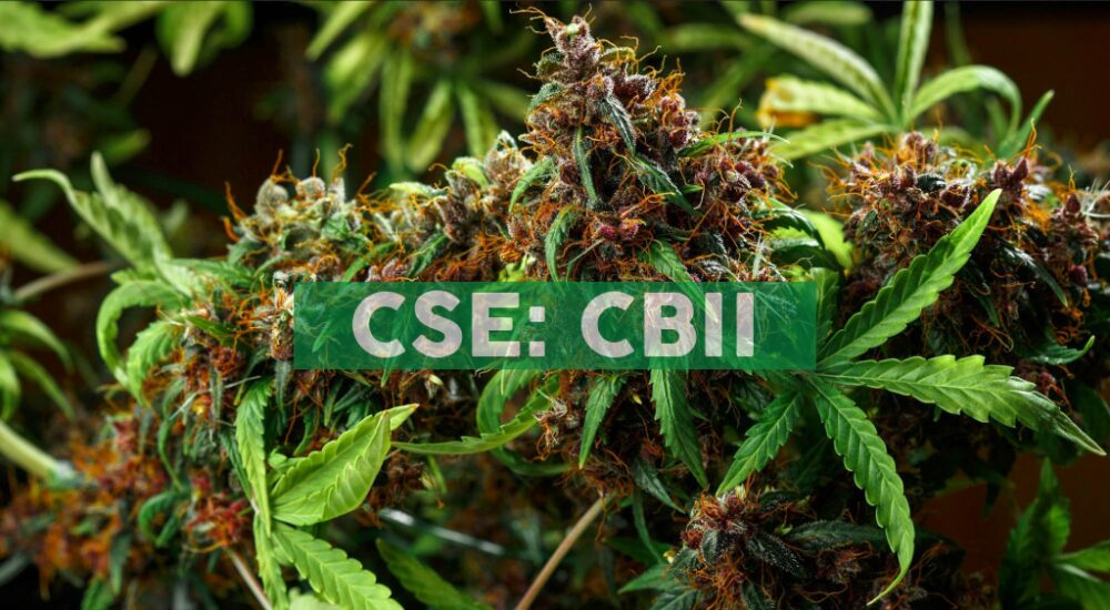 CB2 Insights Announces Q1 Financial Statements to be filed on or before July 14, 2020