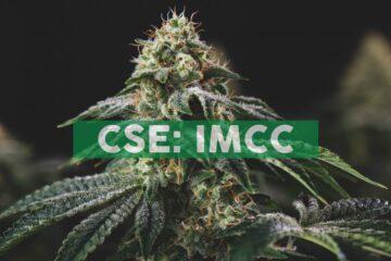 IMC Announces Israeli Government Advancing Cannabis Decriminalization
