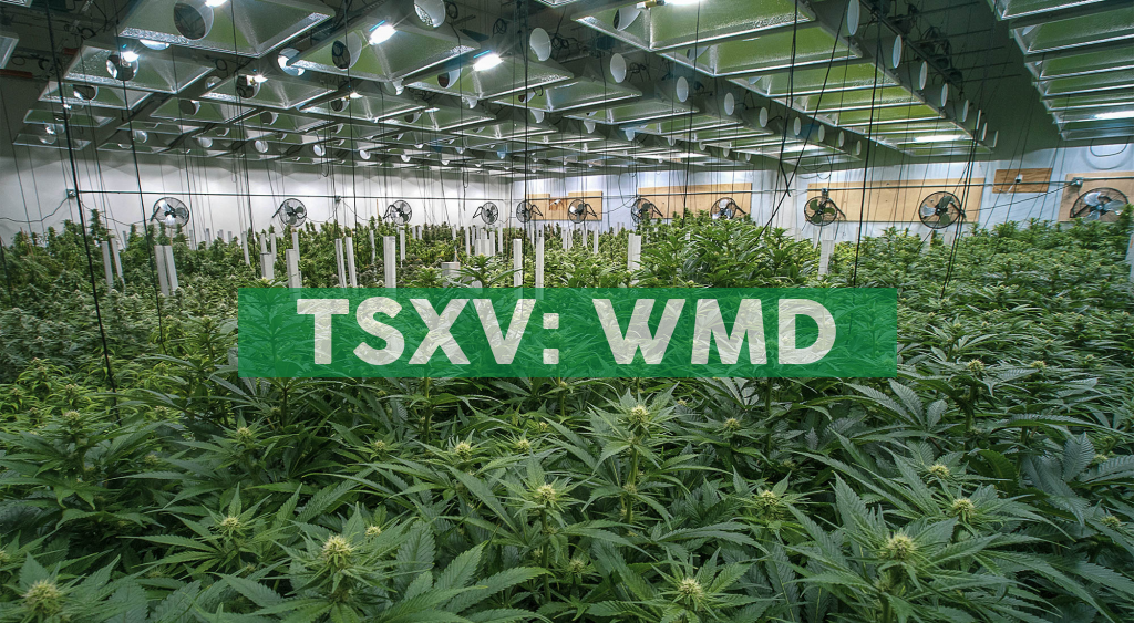 WeedMD Reports Fiscal Year 2019 Financial Results and First Quarter 2020 Preliminary Revenue of $12 Million