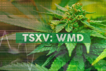 WeedMD Cultivars Included in UHN-led Chronic Pain Study
