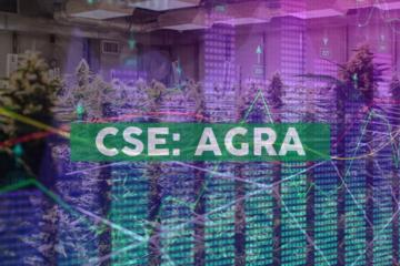 AgraFlora Organics Prepares over 1,000KG of CBD Oil for Sale