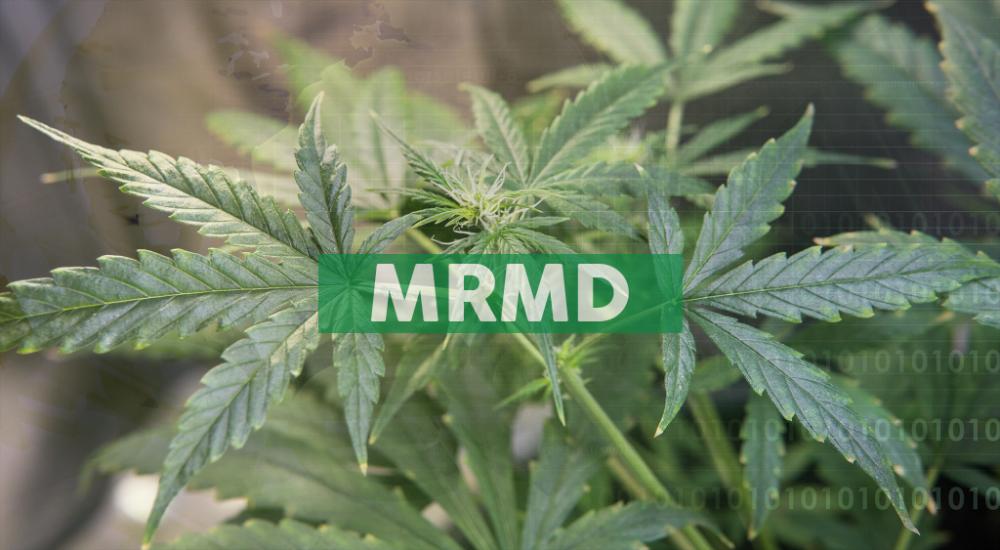 Marimed's Betty's Eddies™ Brand Capturing Massachusetts Cannabis Market Share