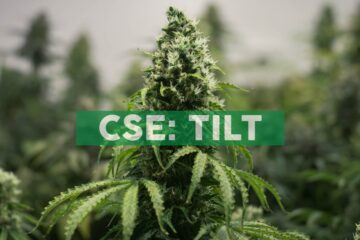 TILT Holdings Announces Financial Results for the Three and Six-Months ended June 30, 2020
