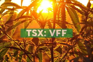 Village Farms International Partners with One of Asia-Pacific's Leading Cannabinoid Platforms, Altum International, to Target Asia-Pacific CBD and Cannabis Markets