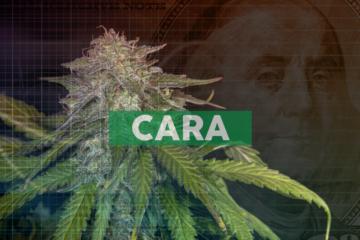 Cara Therapeutics Reports Second Quarter 2020 Financial Results