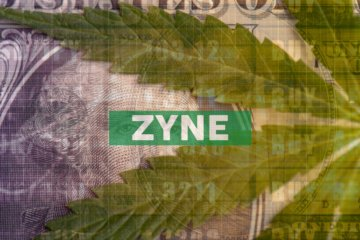 Zynerba Pharmaceuticals Reports Second Quarter 2020 Financial Resultsand Operational Highlights