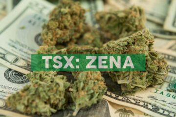 Zenabis Global Inc. Adopts Advance Notice Policy