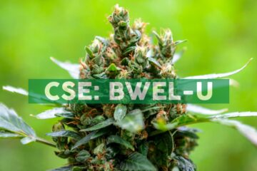 Bluma Wellness Inc. Provides End-of-Month Operations Update and Financial Highlights for August 2020