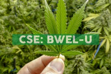 Bluma Wellness Inc. Sets Opening Date for 'One Plant Florida' Ocala Dispensary and Delivery Hub Location, Announces Approval of DTC Eligibility