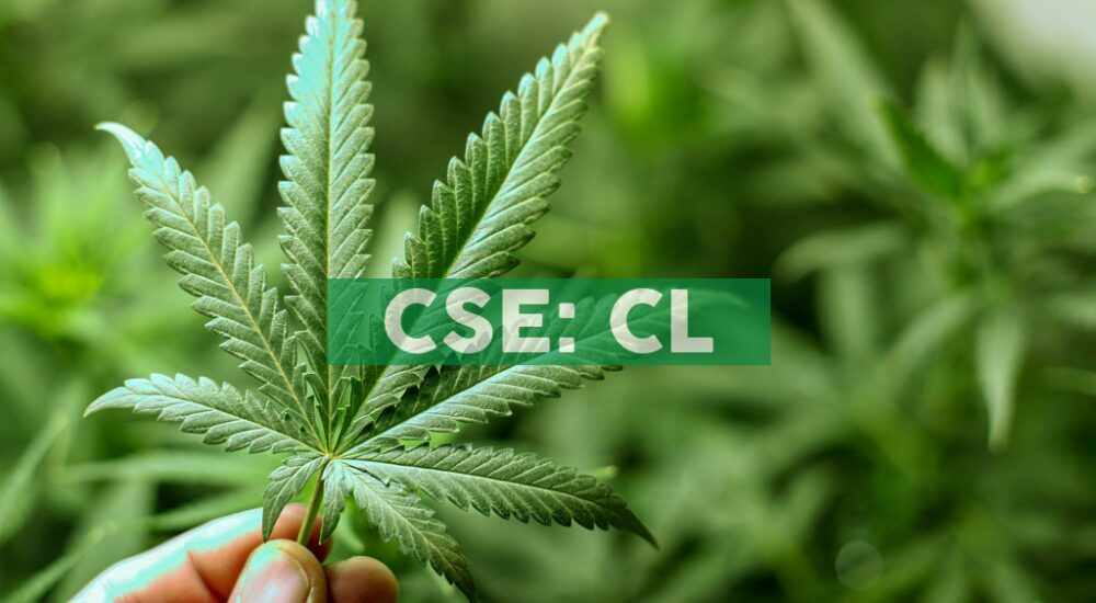 Cresco Labs Launches Good News Cannabis Brand