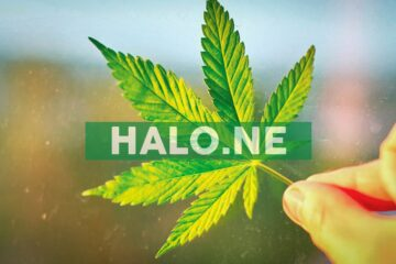 Halo and High Tide Announce Amended Terms on Sale of KushBar Assets to Halo