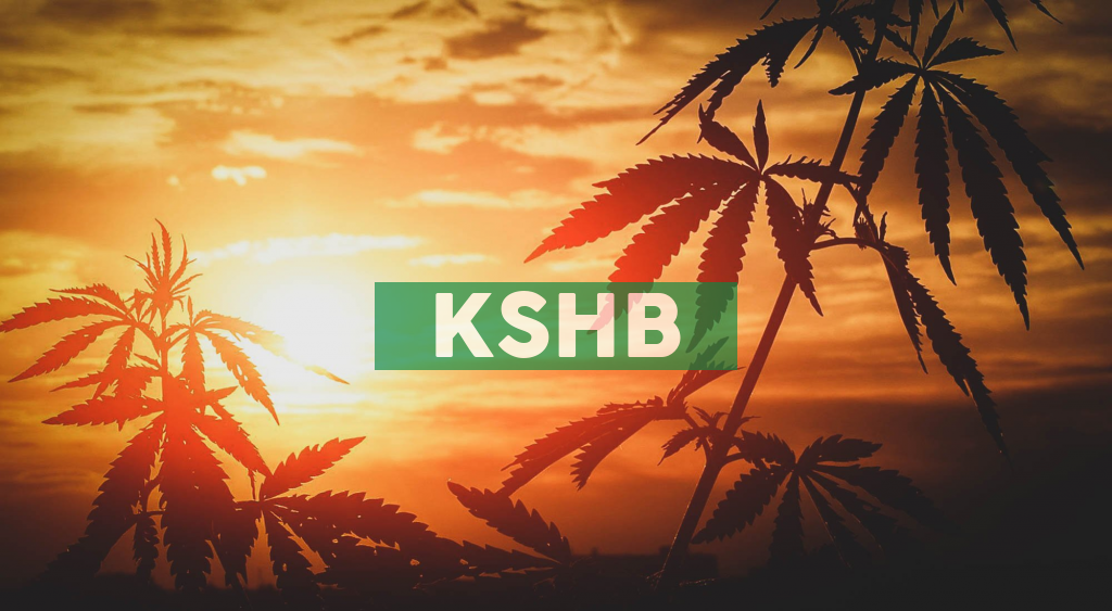 KushCo Holdings Sets September and October 2020 Financial Conference Schedule