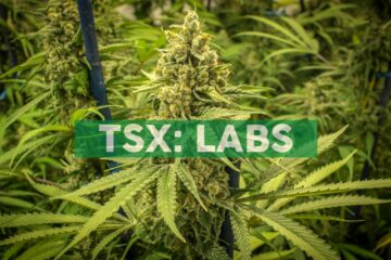 MediPharm Labs Enters Denmark Medical Cannabis Market, Secures New White-Label Supply Customers