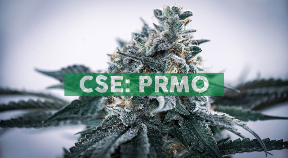 Primo Nutraceuticals Inc. and Dan Duquette, Former MLB Executive, Sign Definitive Agreement to Capitalize on Primo Receiving an MDEL License from Health Canada and announces Stock Option Grant