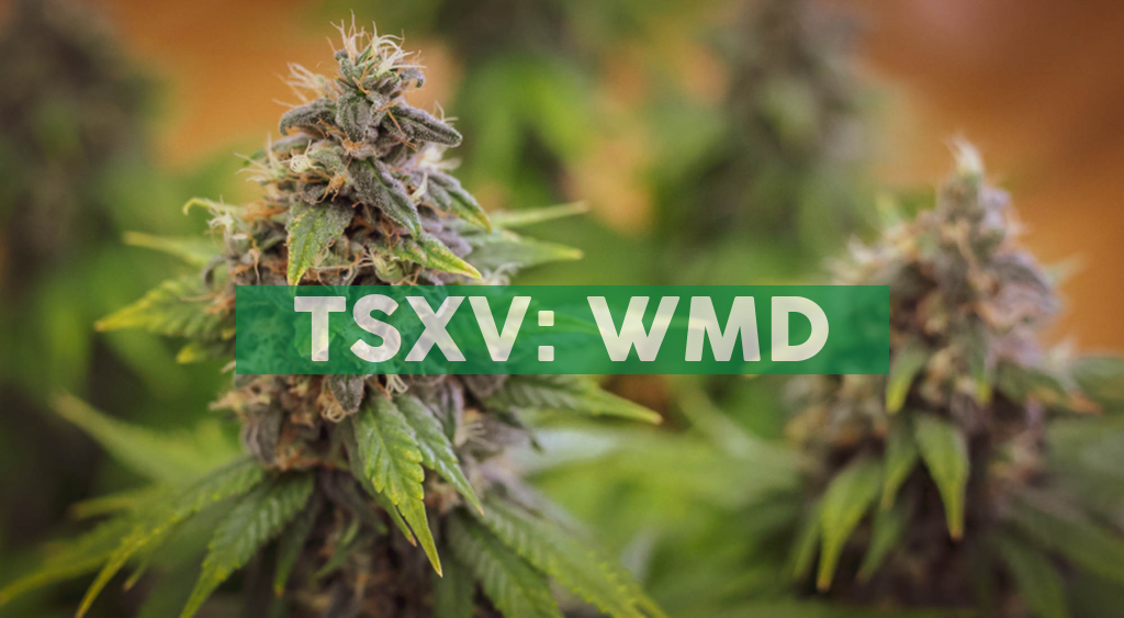 WeedMD Closes Definitive Agreement for $30 Million Credit Facility with LiUNA Pension Fund