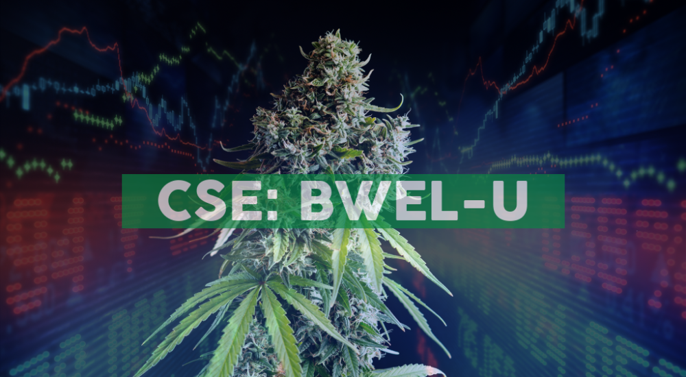 Bluma Wellness Inc. Provides End-of-Month Operations Update and Financial Highlights for July 2020