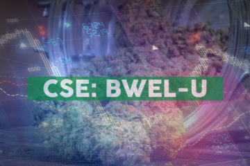Bluma Wellness Inc. Receives Approval for 'One Plant Florida' Tallahassee Dispensary and Delivery Hub Location, Announces Grant of RSUs