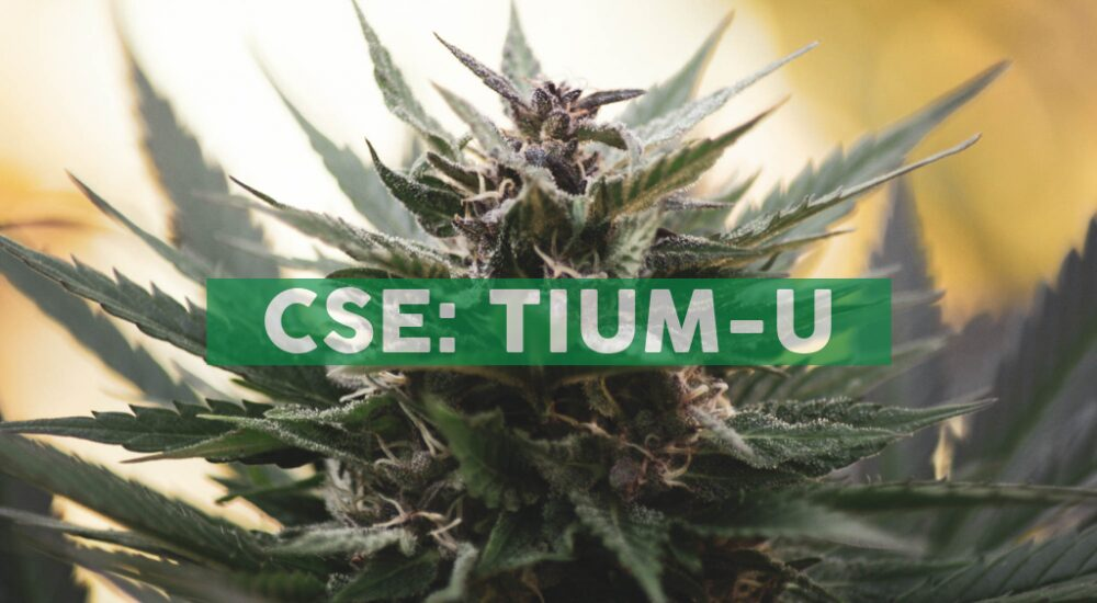 Cansortium Announces Opening of its 22nd Fluent™ Medical Marijuana Dispensary in Florida