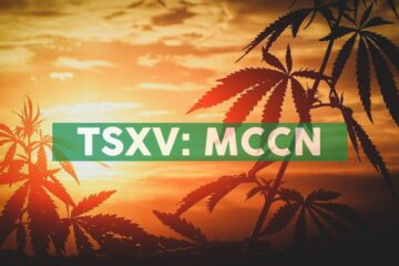 Medcolcanna Organics Inc. Announces Listing on The NEO Exchange And Delisting of Common Shares From The TSXV
