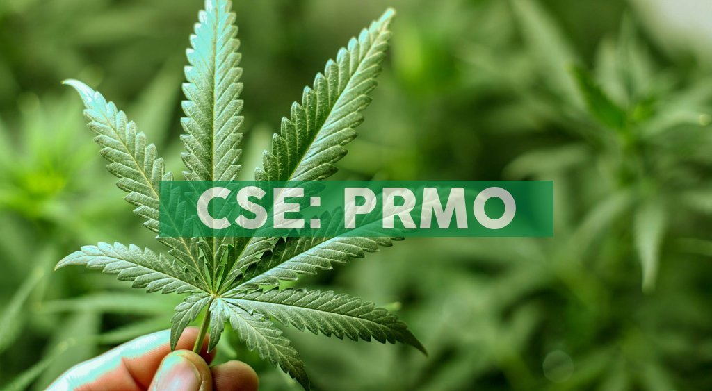 Primo Nutraceuticals Inc. signs a Memorandum of Understanding for Exclusive Rights to Sell Rapid (Colloidal Gold Method) COVID-19 Test Kits in Canada