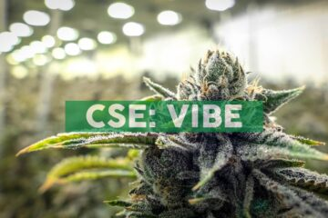 Vibe Growth Corporation Announces Ventura Shareholder Approval of Acquisition of Portland Cannabis Assets