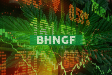 Bhang Announces Board Changes