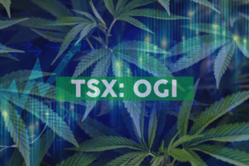 Organigram CEO Joins Canadian Chamber of Commerce Board of Directors