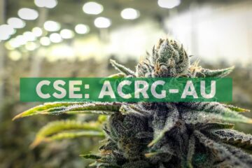 Acreage To Begin Adult-Use Sales in Massachusetts