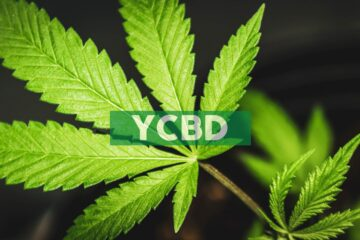 CbdMD Seeks To Obtain Regulatory Approval From United Kingdom's Regulatory Food Safety Agency (FSA)