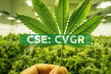 City View Green Holdings Inc. Advances Deposit for Chocolate Edibles Equipment