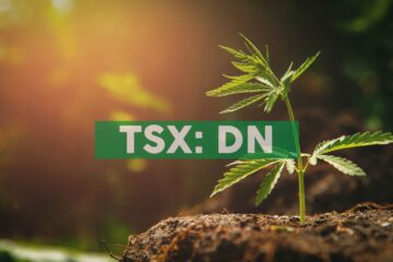 Delta 9 Cannabis, Inc. to Host Earnings Call