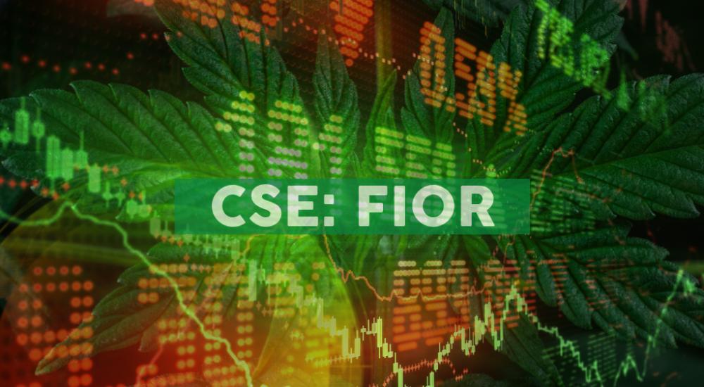 Fiore Cannabis Ltd. Announces LOI of US$2 Million Secured Loan