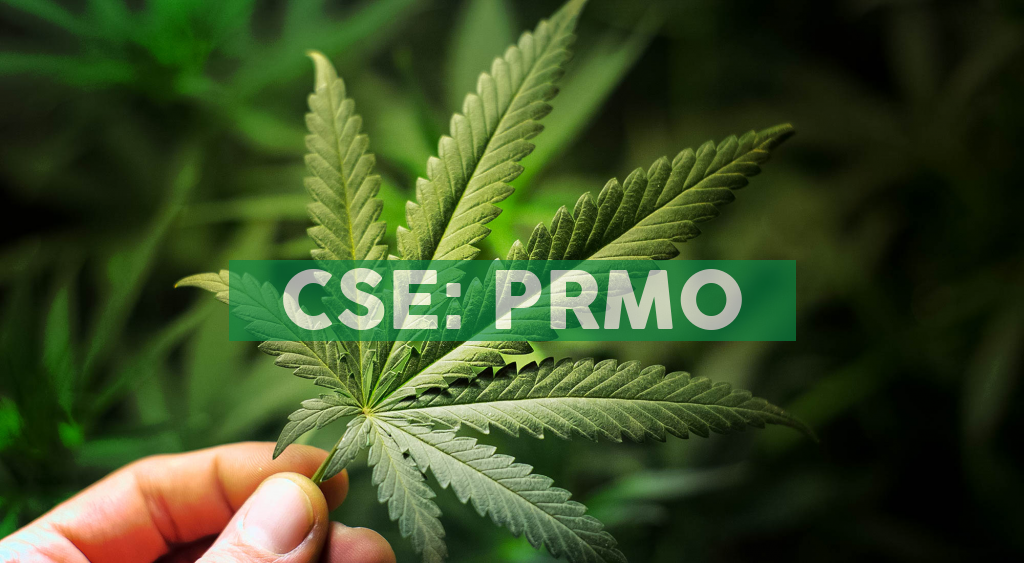 Primo Nutraceuticals Inc. Enters into a Binding LOI to acquire 100% of the Assets of Full Spectrum Biosciences Inc.