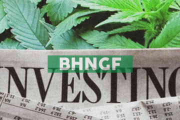 Bhang Amends Secured Credit Facility with Cannabis Growth Opportunity Corporation