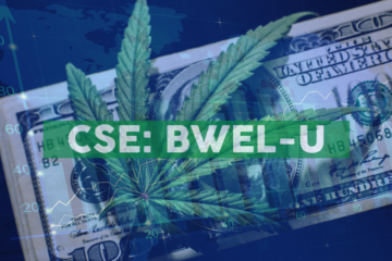 Bluma Wellness Inc. Sets Opening Date for Sixth 'One Plant Florida' Retail Dispensary and Delivery Hub in Avon Park, Florida