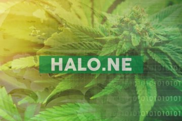 Halo Labs Closes Acquisition of United Kingdom Cannabis Distributor Canmart