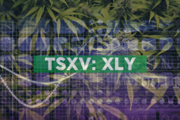 Auxly's Subsidiary KGK Science Receives Institutional Cannabis Research Licence from Health Canada