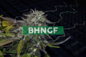 Bhang Completes Year-End Debt Settlements