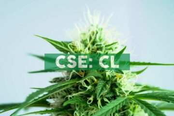Cresco Labs Launches Eighth Cannabis Brand, Wonder Wellness Co.™