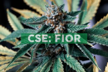 Fiore Cannabis Ltd. Announces US$2 Million Secured Loan