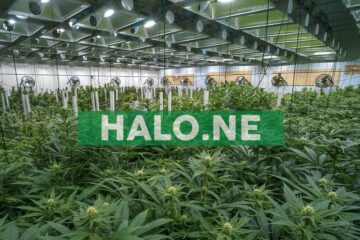 Halo Closes Acquisition of Winberry Farms