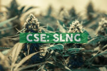 SLANG Worldwide Chooses Colorado, the Epicenter of Cannabis, for Expansion