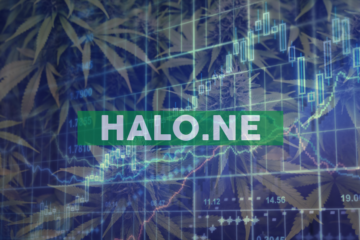 Halo Labs Completes Securities Issuance to Independent Consultants, Related Parties, and Suppliers